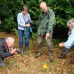 RDNHS members examining fungus